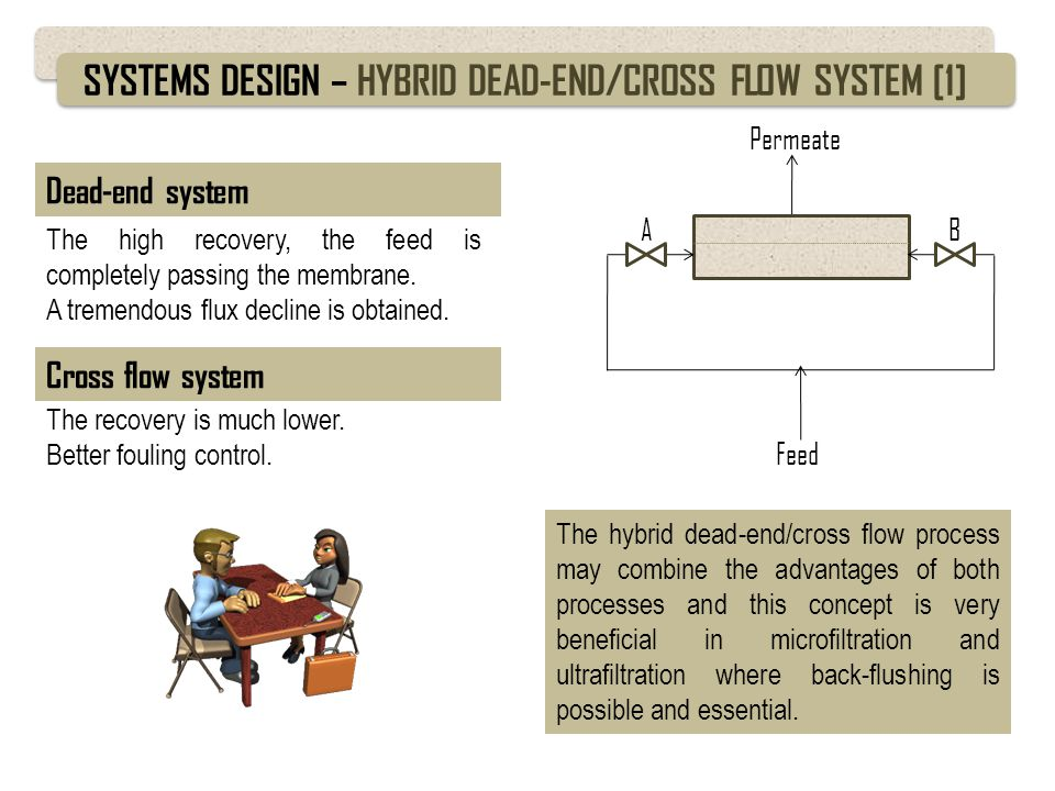 SYSTEMS DESIGN – HYBRID DEAD-END/CROSS FLOW SYSTEM [1]